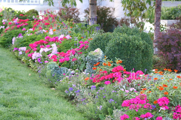 A visit to temple square valley gardens for Narrow flower bed ideas